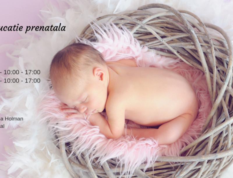 Curs de educație prenatală – filosofia nașterii: 25-26 mai 2019